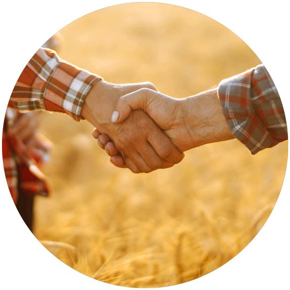 Biomasa rolna i drzewna - skup sprzedaż z transportem