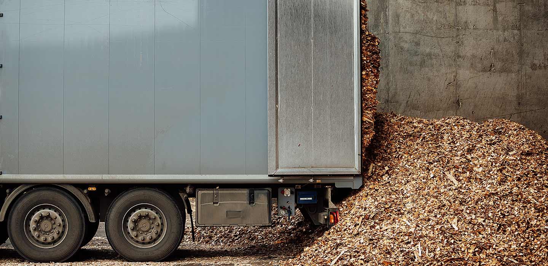 Skup biomasy drzewnej na terenie Polski